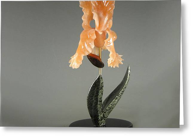Alabaster Sculptures Greeting Cards - Iris #2 Greeting Card by Leslie Dycke