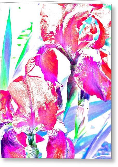 Pairs Greeting Cards - Iris 5 Greeting Card by Pamela Cooper