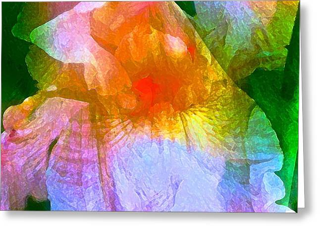 Iris 53 Greeting Card by Pamela Cooper