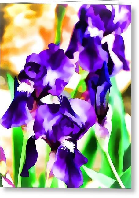 Pamela Cooper Greeting Cards - Iris 63 Greeting Card by Pamela Cooper