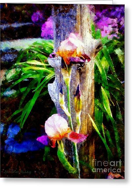 Iris Bloom Greeting Card by Janine Riley