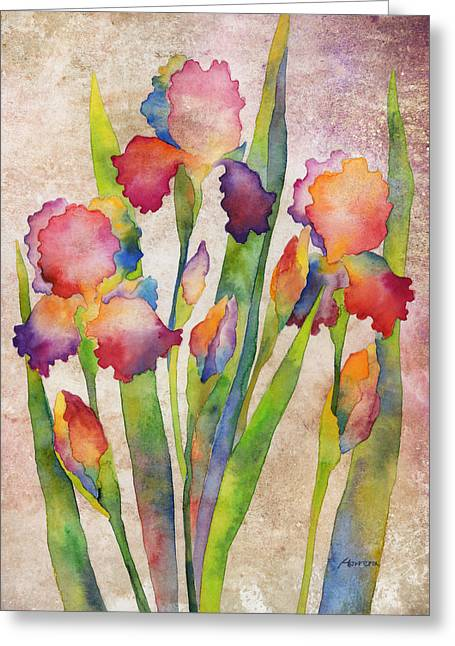 Violet Blue Greeting Cards - Iris Elegance on Pink Greeting Card by Hailey E Herrera