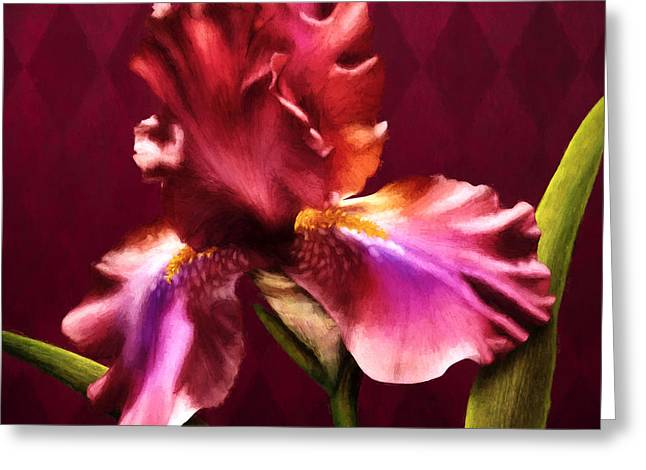 Burgundy Digital Art Greeting Cards - Iris I Greeting Card by April Moen