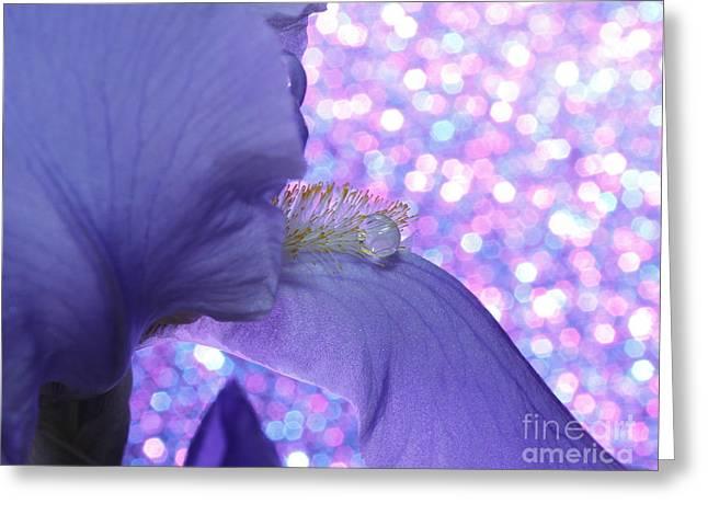 Iris Jewel Greeting Card by Krissy Katsimbras