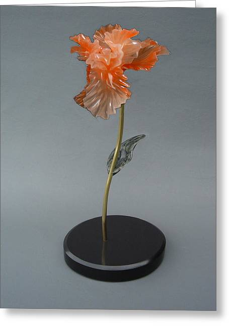 Alabaster Sculptures Greeting Cards - Iris Greeting Card by Leslie Dycke
