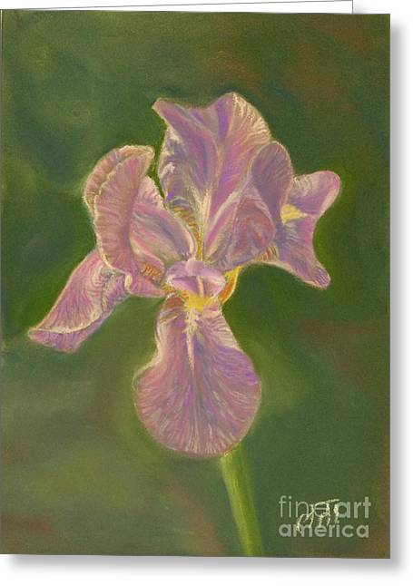 Iris Pastels Greeting Cards - Iris Greeting Card by Mary  Fields