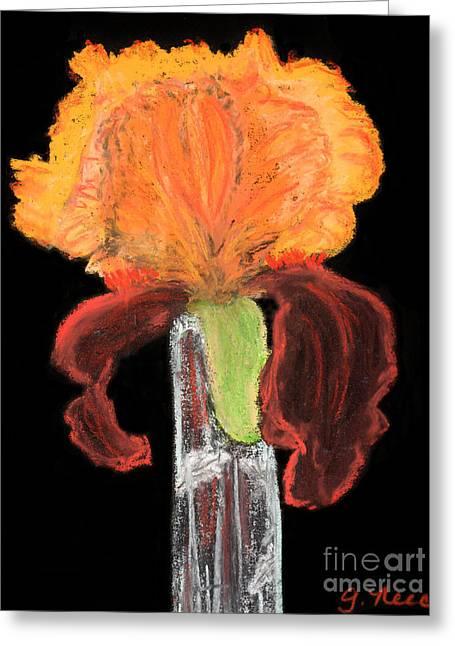 Iris Pastels Greeting Cards - Iris on Black Greeting Card by Ginny Neece