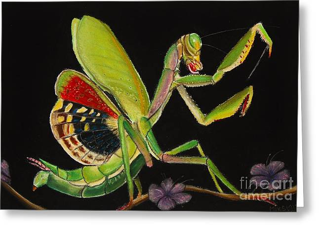 Butterfly Prey Greeting Cards - Iris oratoria Greeting Card by Mik Smith
