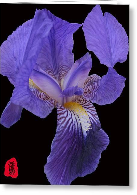 Stamen Digital Art Greeting Cards - Iris photo Greeting Card by GuoJun Pan