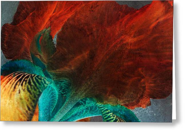 Stamen Digital Art Greeting Cards - Iris Sonata Greeting Card by Bonnie Bruno