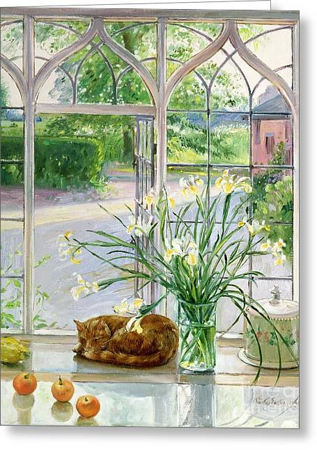 Ledge Greeting Cards - Irises and Sleeping Cat Greeting Card by Timothy Easton