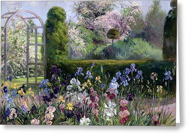 Irises In The Formal Gardens, 1993 Greeting Card by Timothy Easton