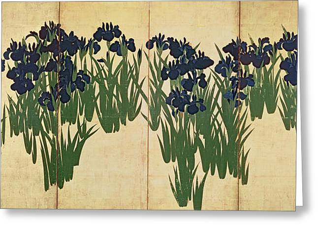 Asian Art Greeting Cards - Irises Greeting Card by Ogata Korin