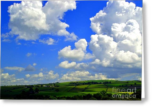 Natural Realm Greeting Cards - Irish Fields Greeting Card by Nina Ficur Feenan