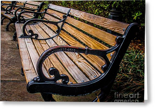 Park Benches Greeting Cards - Iron Bench Greeting Card by Perry Webster