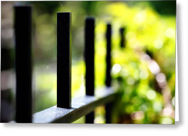 Gold Lime Green Greeting Cards - Iron Fence no 1 - landscape nature still life outdoors green flower plant nature Greeting Card by Amelia Kay Photography