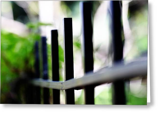 Gold Lime Green Greeting Cards - Iron Fence no 2 landscape nature still life outdoors green flower plant nature Greeting Card by Amelia Matarazzo