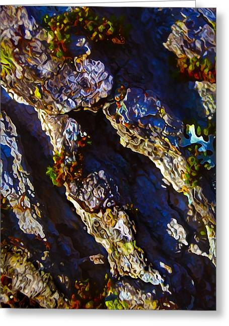 Moss Greeting Cards - Ironwood Bark with Moss Greeting Card by Bill Caldwell -        ABeautifulSky Photography
