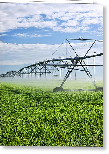 Equipment Greeting Cards - Irrigation equipment on farm field Greeting Card by Elena Elisseeva