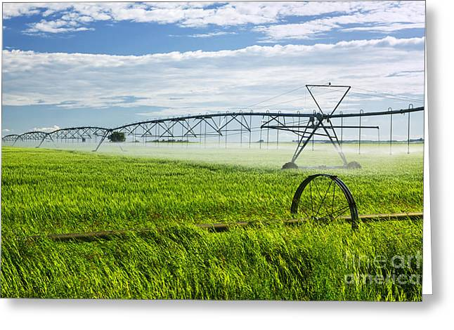 Saskatchewan Prairies Greeting Cards - Irrigation on Saskatchewan farm Greeting Card by Elena Elisseeva