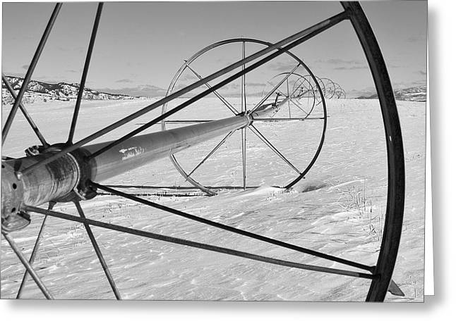 Winter Prints Greeting Cards - Irrigation Pipe In Winter Greeting Card by Theresa Tahara