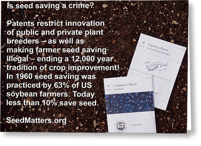 Local Food Greeting Cards - Is Seed Saving a Crime Greeting Card by Jon Simmons
