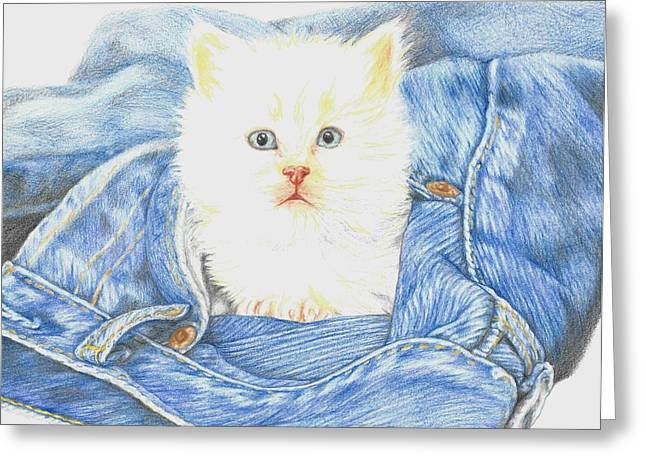 Baby Kitten Art Drawings Greeting Cards - Is that a kitten in your pocket? Greeting Card by Monica Margarida
