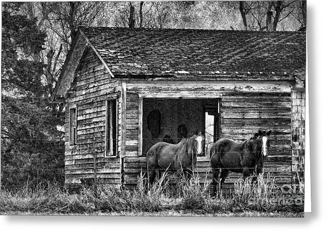 Old House Photographs Photographs Greeting Cards - Is This Our Barn Greeting Card by Betty LaRue