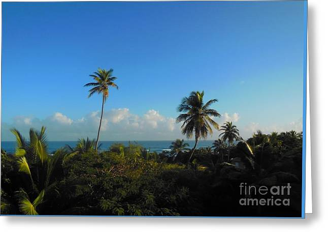 Tropic Greeting Cards - Isabela Puerto Rico Greeting Card by Eloise Schneider