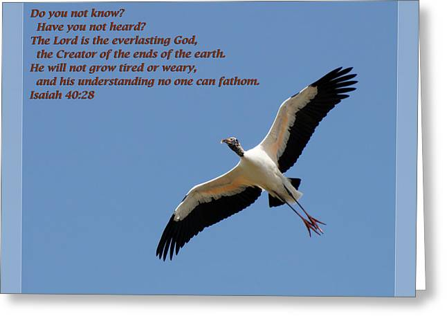 Sympathy Greeting Cards - Isaiah 40 28 Greeting Card by Dawn Currie