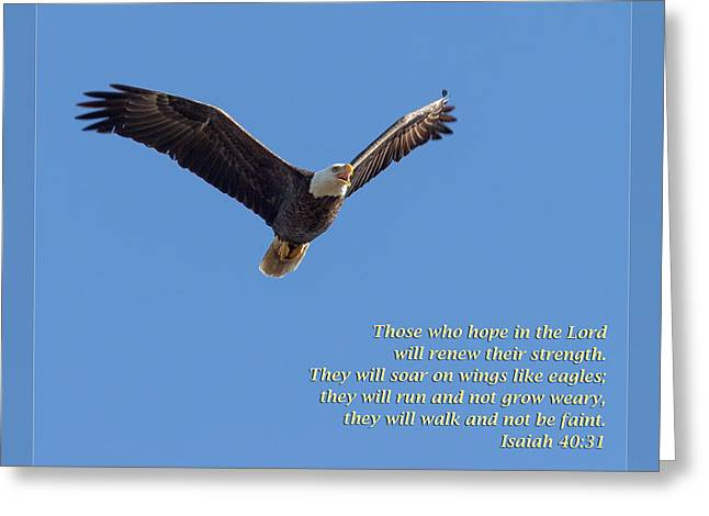 Renewing Greeting Cards - Isaiah 40 31 Greeting Card by Dawn Currie