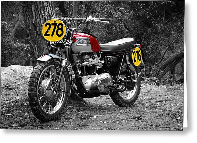 Motorcycles Greeting Cards - ISDT Triumph Steve McQueen Greeting Card by Mark Rogan