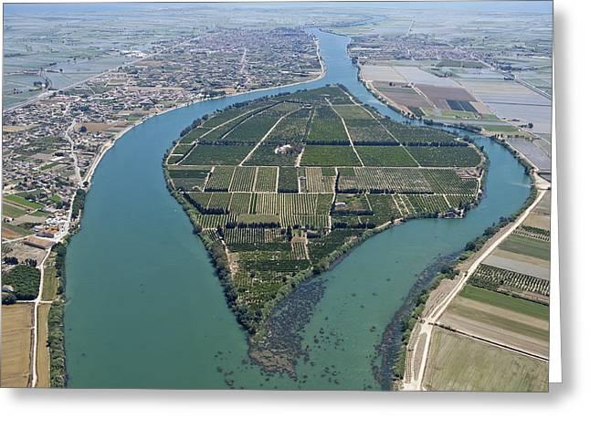 Agronomy Greeting Cards - Isla De Gracia, Ebro Delta Greeting Card by Jordi Todó Vila