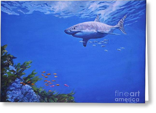 White Shark Paintings Greeting Cards - Pacific Great White Greeting Card by Noe Peralez