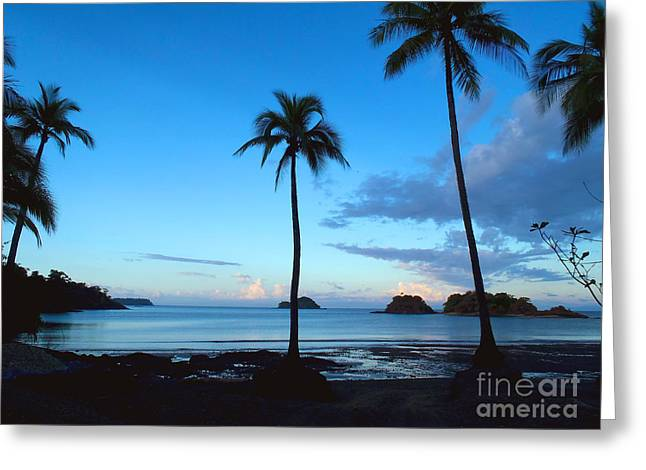 Costa Rica Greeting Cards - Isla Secas Greeting Card by Carey Chen