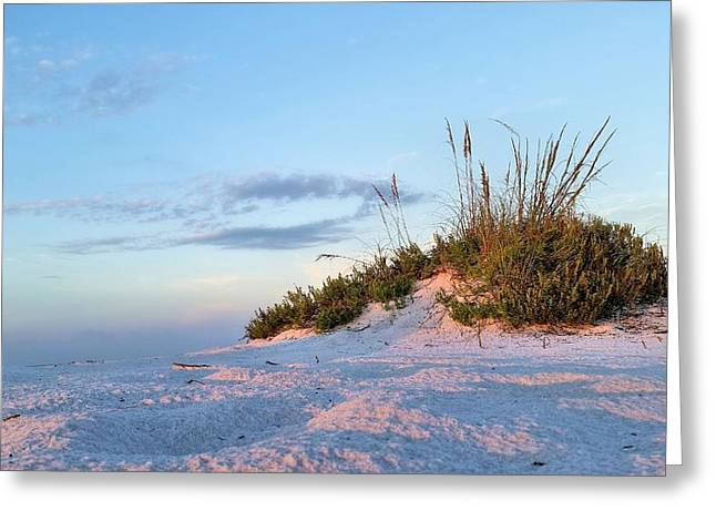Florida Panhandle Greeting Cards - Island Beaches Greeting Card by JC Findley