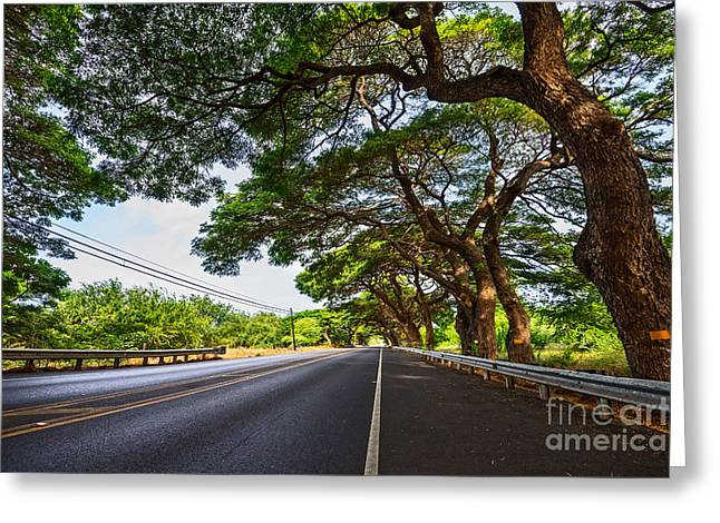 Paradise Road Greeting Cards - Island Drive  Greeting Card by Jamie Pham