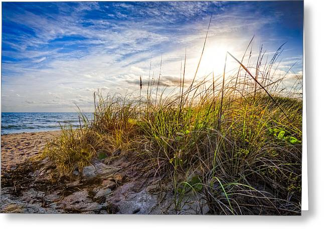 Sea Grasses On Sand Dunes Greeting Cards - Island Dunes Greeting Card by Debra and Dave Vanderlaan