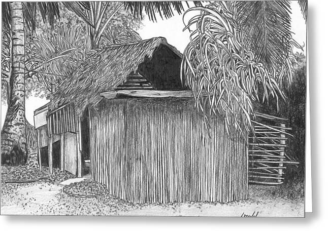 Thatch Drawings Greeting Cards - Island House 14 Greeting Card by Lew Davis