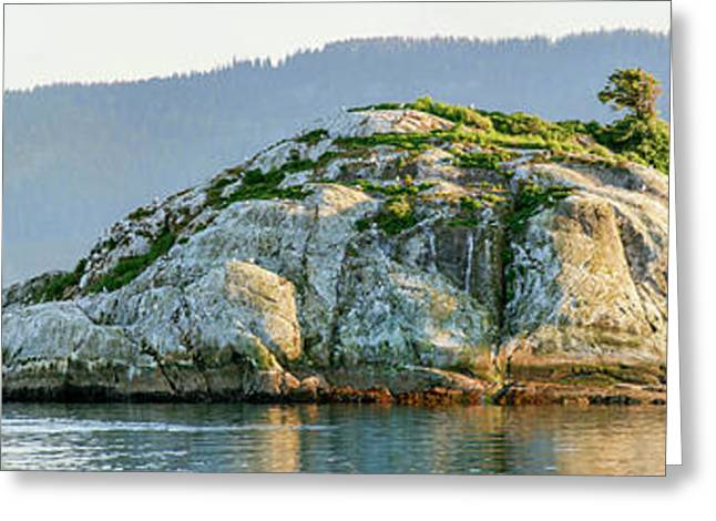 Island In A Lake, Glacier Bay National Greeting Card by Panoramic Images