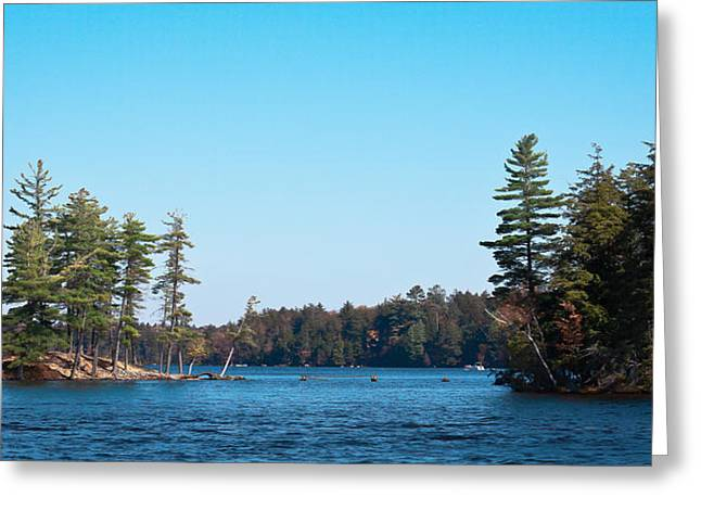 Aderondacks Greeting Cards - Island on the Fulton Chain of Lakes Greeting Card by David Patterson