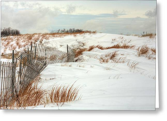 Blizzard New York Greeting Cards - Island Snow Greeting Card by JC Findley