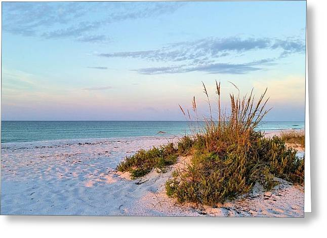 Florida Panhandle Greeting Cards - Island Solitude Greeting Card by JC Findley