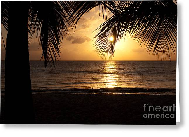 Cozumel Greeting Cards - Island Sunset Greeting Card by Charles Dobbs