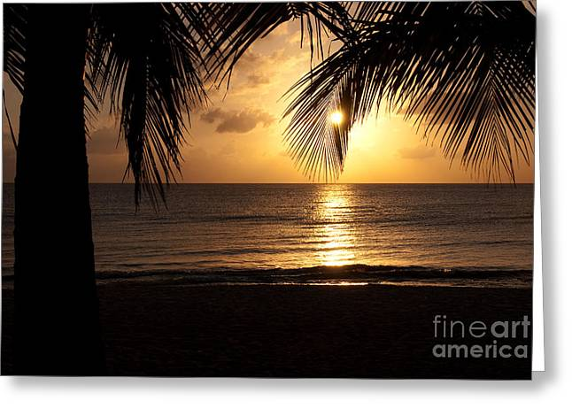 Island Sunset Greeting Card by Charles Dobbs