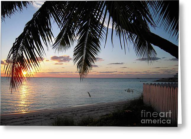 Danielle Perry Greeting Cards - Island Sunset Greeting Card by Danielle  Perry
