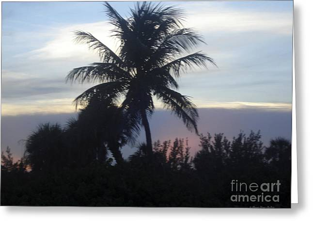 St. Lucie County Greeting Cards - Island Sunset Greeting Card by Megan Dirsa-DuBois