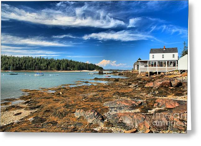 Isle au Haut House Greeting Card by Adam Jewell