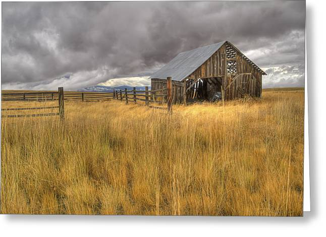 Wooden Building Greeting Cards - Isolated Barn in Oregon Greeting Card by Jean Noren