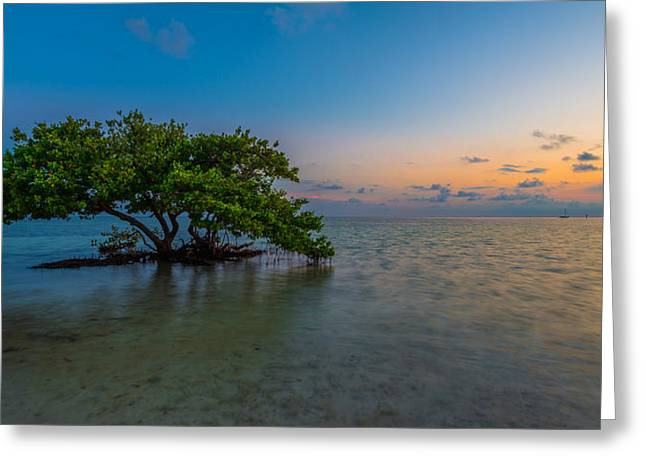 Blue Green Water Photographs Greeting Cards - Isolation Greeting Card by Chad Dutson